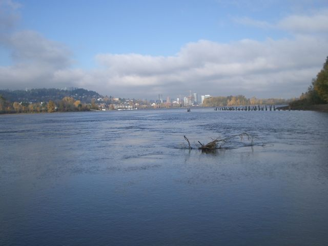Willamette River in Sellwood