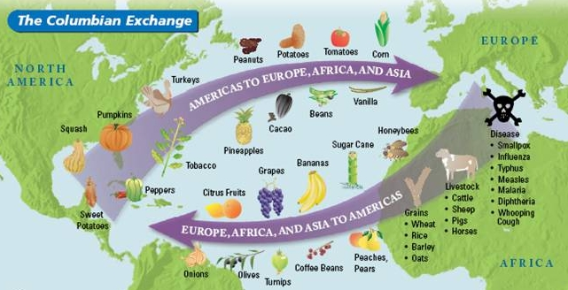 Columbian Exchange graphic.